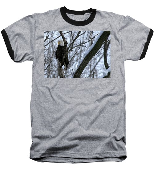 Baseball T-Shirt featuring the photograph Starved Rock Eagle by Paula Guttilla