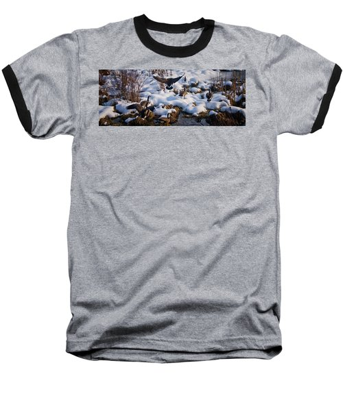 Baseball T-Shirt featuring the photograph Staying Put by Albert Seger
