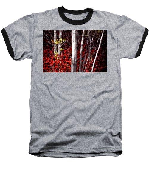 Stealing Beauty Baseball T-Shirt