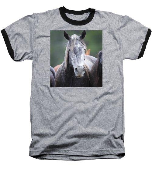 Steel Grey Baseball T-Shirt by Diane Bohna