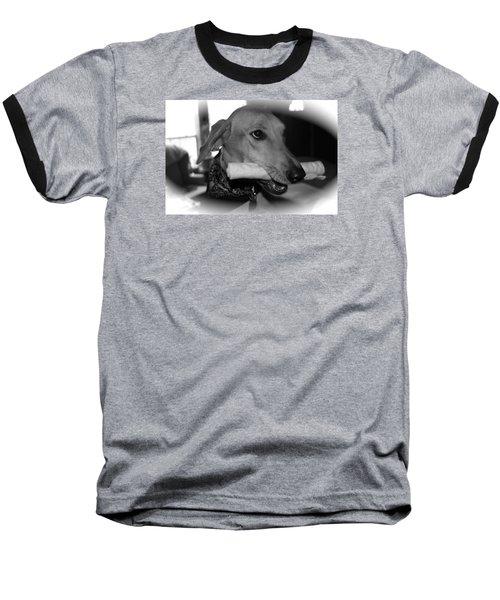 Stella Baseball T-Shirt