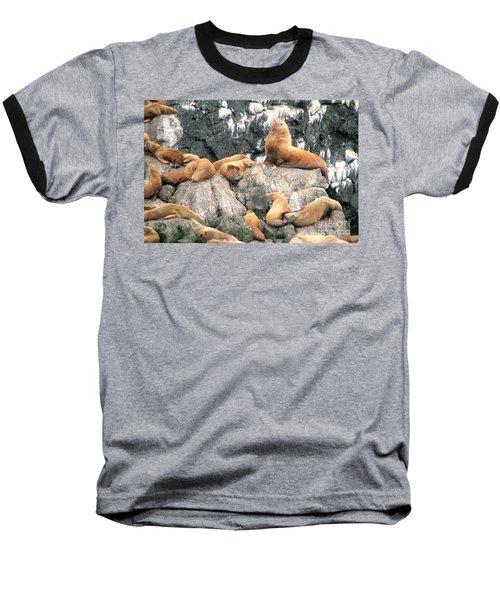 Steller Bull With Harem Baseball T-Shirt