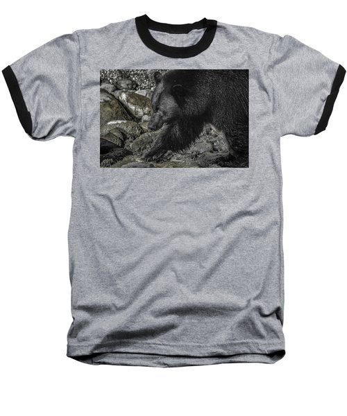 Stepping Into The Creek Black Bear Baseball T-Shirt