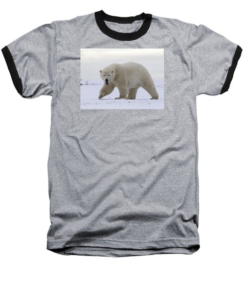 Stepping Out In The Arctic Baseball T-Shirt