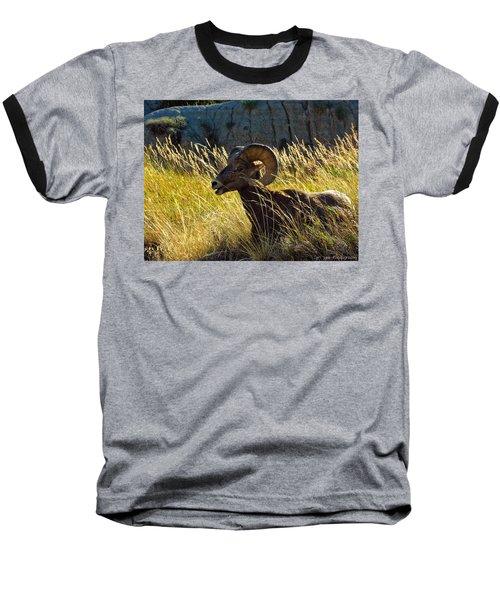 Still As A Statue Baseball T-Shirt