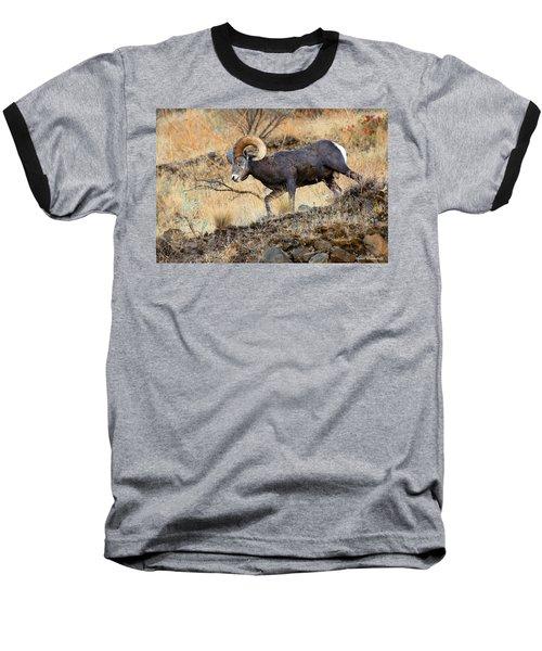Still Com'n Baseball T-Shirt