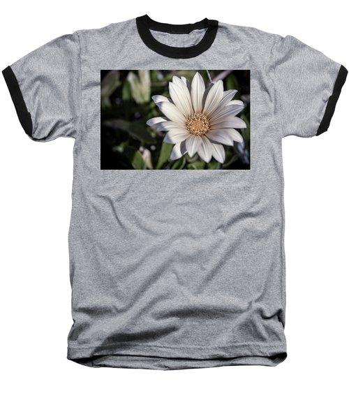 Still Dreaming Baseball T-Shirt