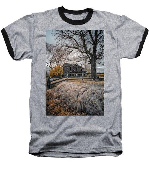 Still Standing Ir Baseball T-Shirt by Paul Seymour