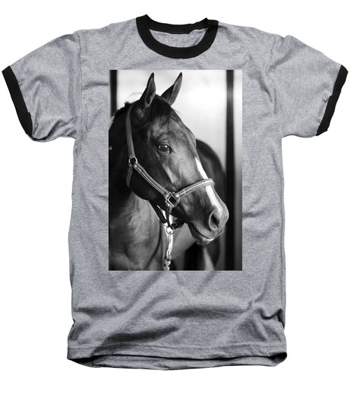Horse And Stillness Baseball T-Shirt