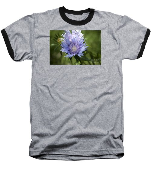 Stokes Aster 20120703_125a Baseball T-Shirt