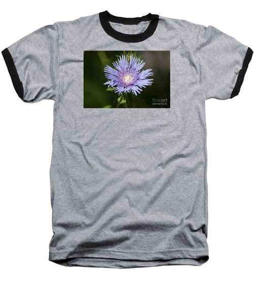 Baseball T-Shirt featuring the photograph Stokes Aster 20120703_129a by Tina Hopkins