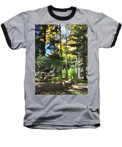 Stone Park Trails Baseball T-Shirt