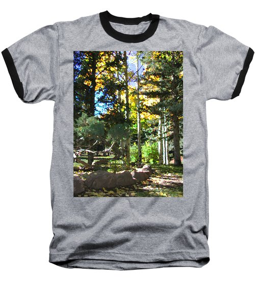 Stone Park Trails Baseball T-Shirt