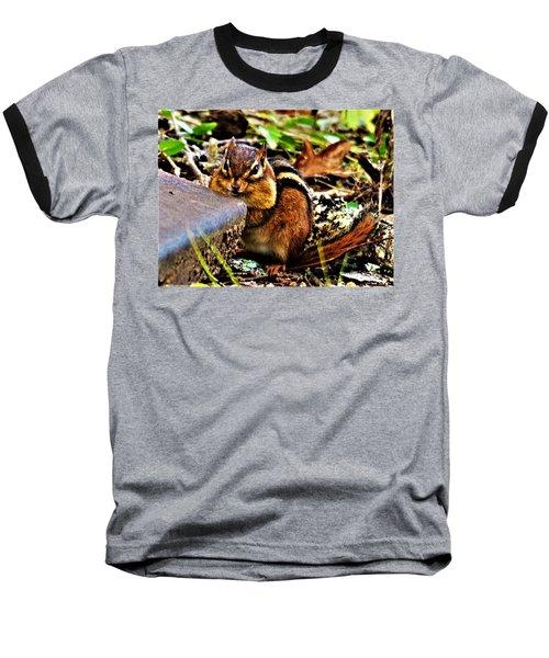 Storing For Winter Baseball T-Shirt