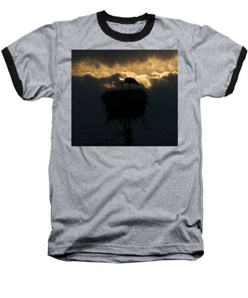 Stork With Evening Sun Light  Baseball T-Shirt