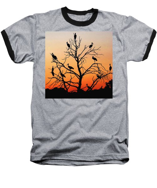 Storks In The Evening Sun Light Baseball T-Shirt
