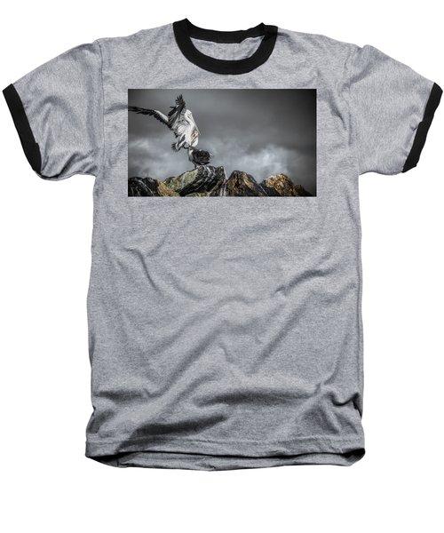 Storm Birds Baseball T-Shirt