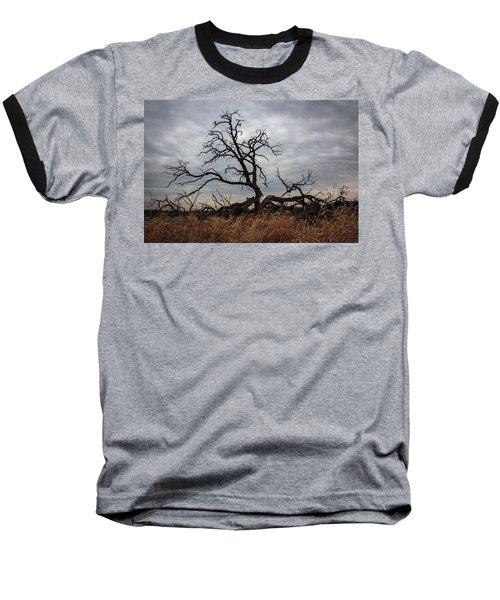 Storms Make Trees Take Deeper Roots  Baseball T-Shirt