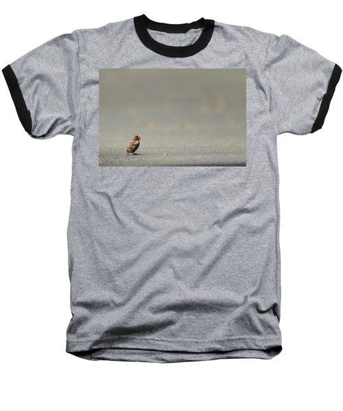 Story Of The Baby Chipping Sparrow 3 Of 10 Baseball T-Shirt by Joni Eskridge