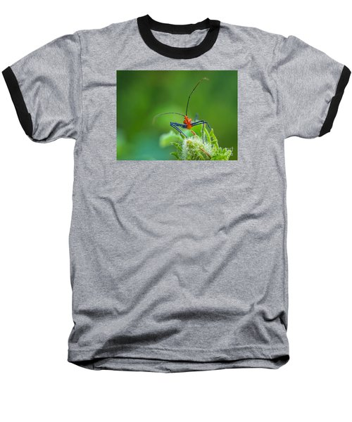 Straight In The Eye Look  Baseball T-Shirt by Tom Claud
