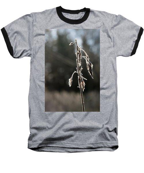 Straw In Backlight Baseball T-Shirt