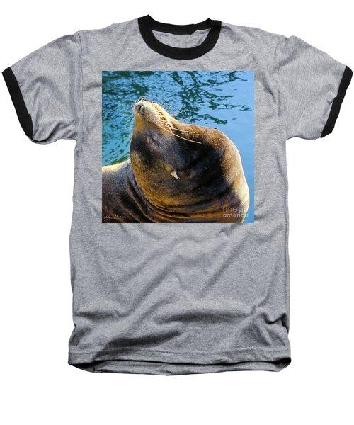 Stretch Baseball T-Shirt