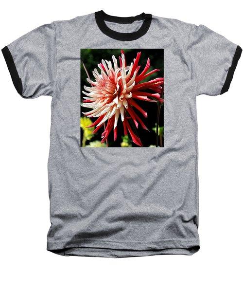 Striking Dahlia Red And White Baseball T-Shirt