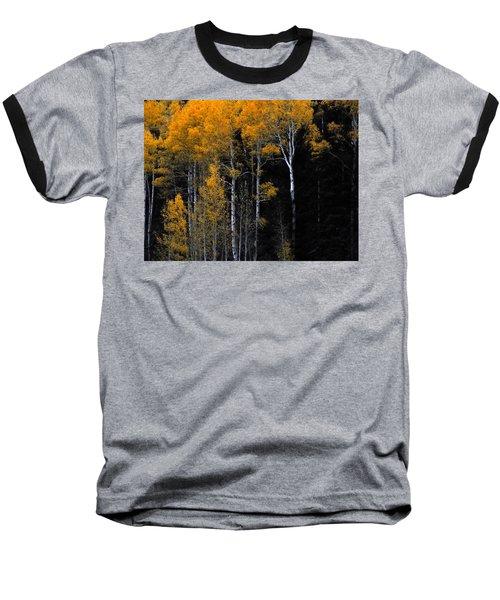 Striking Gold Baseball T-Shirt by Charlotte Schafer