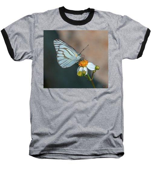 Striped Albatross Butterfly Dthn0209 Baseball T-Shirt