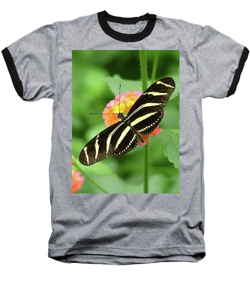 Striped Butterfly Baseball T-Shirt by Wendy McKennon