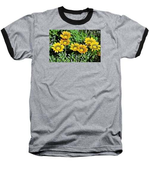 Baseball T-Shirt featuring the photograph Striped Daisies--film Image by Matthew Bamberg
