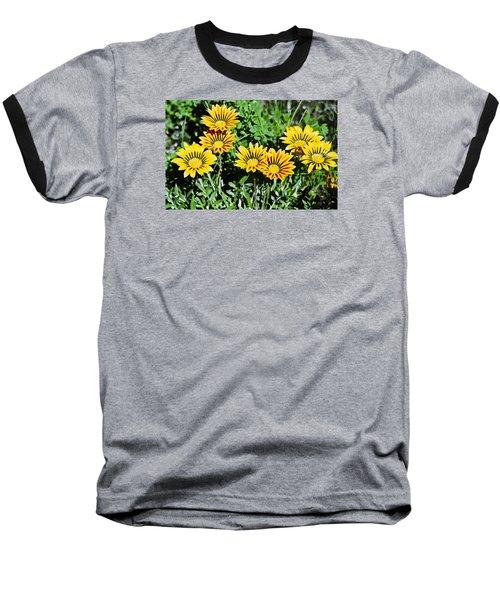 Striped Daisies--film Image Baseball T-Shirt