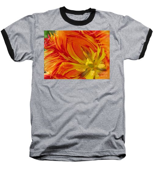 Striped Parrot Tulips. Olympic Flame Baseball T-Shirt