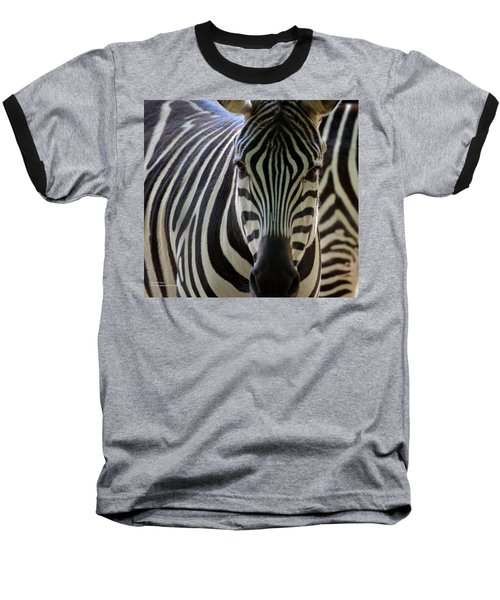 Stripes Baseball T-Shirt by Maria Urso