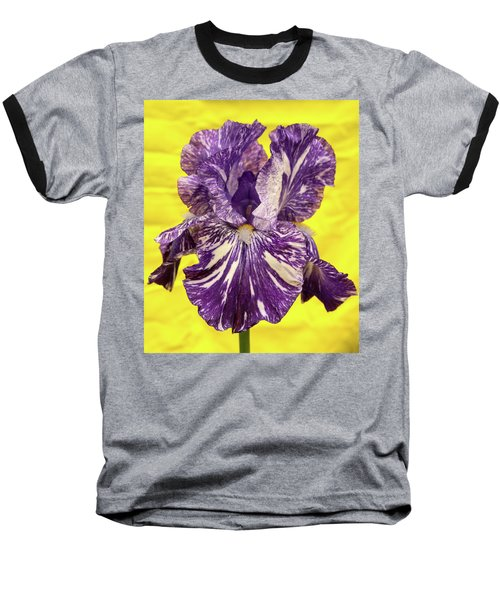 Stripped Lady Iris Baseball T-Shirt