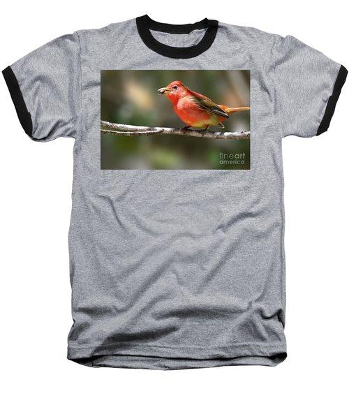 Stuffed Summer Tanager Baseball T-Shirt