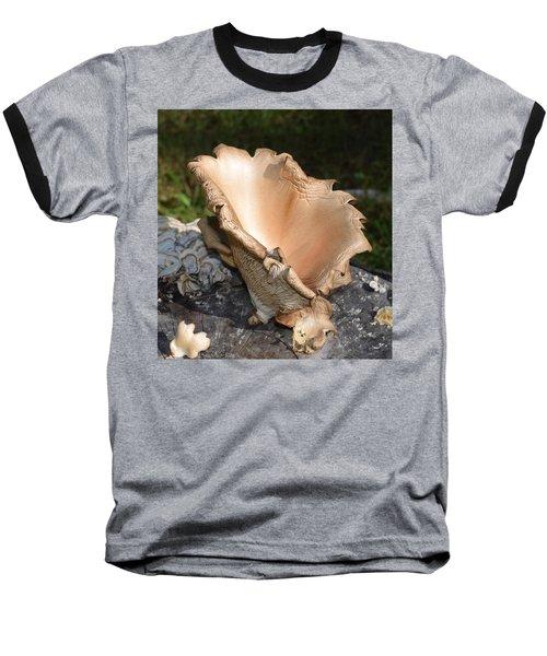 Baseball T-Shirt featuring the photograph Stump Mushroom  by R  Allen Swezey