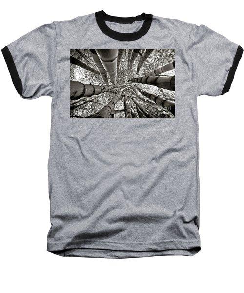 Stunning Bamboo Forest Baseball T-Shirt