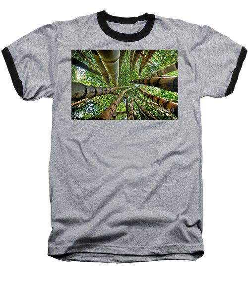 Stunning Bamboo Forest - Color Baseball T-Shirt