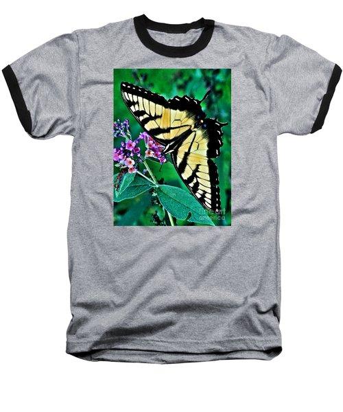 Stunning Monarch Baseball T-Shirt by Christy Ricafrente