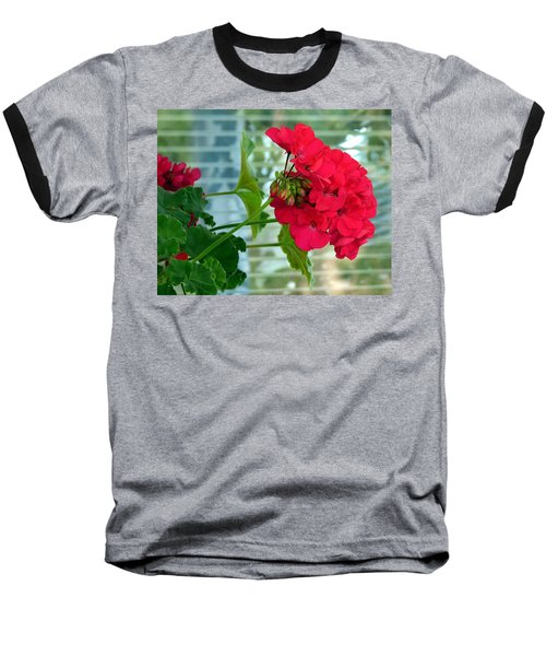 Stunning Red Geranium Baseball T-Shirt