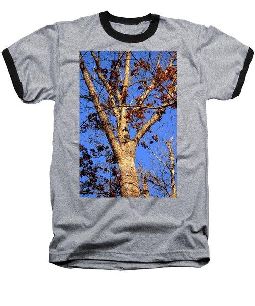 Stunning Tree Baseball T-Shirt