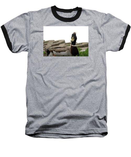 Stylin' Baseball T-Shirt