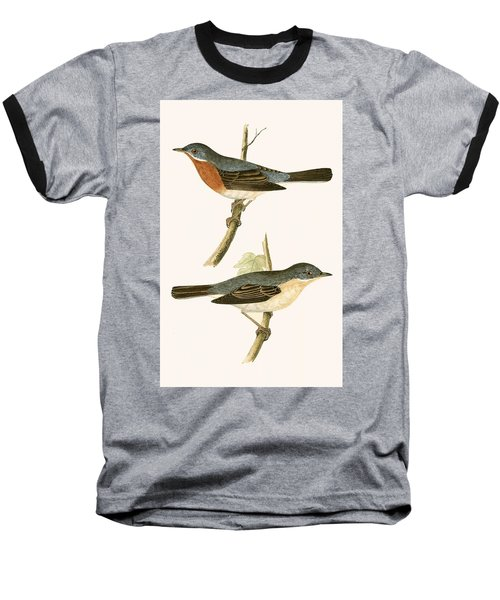 Sub Alpine Warbler Baseball T-Shirt by English School