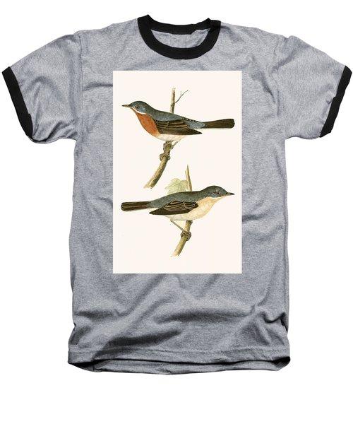 Sub Alpine Warbler Baseball T-Shirt