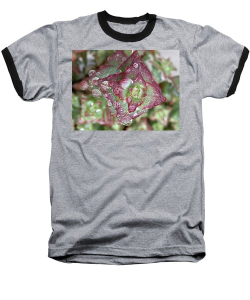 Succulent Abstract Baseball T-Shirt by Russell Keating