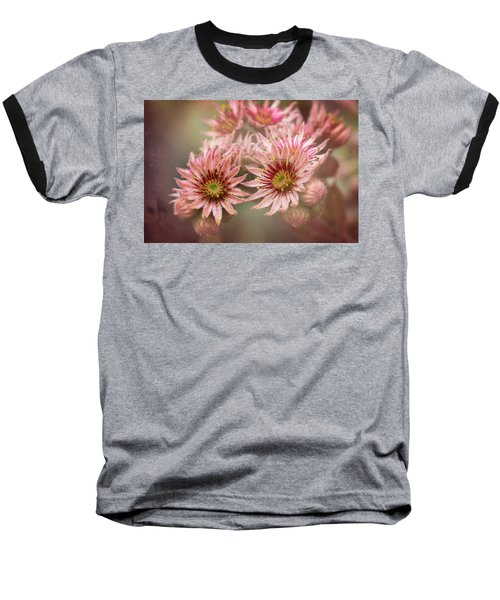 Succulent Flowers - 365-100 Baseball T-Shirt by Inge Riis McDonald