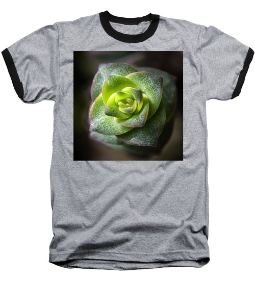 Baseball T-Shirt featuring the photograph Succulent Plant by Catherine Lau