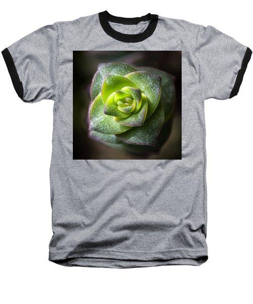 Succulent Plant Baseball T-Shirt by Catherine Lau
