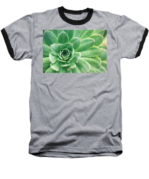 Succulents II Baseball T-Shirt